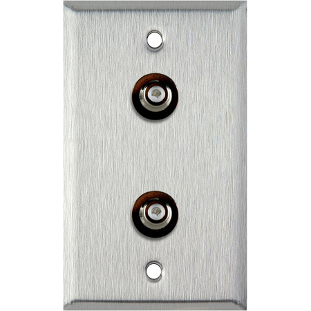 1G Clear Anodized Aluminum Wall Plate with 2 RCA Feed-Thru Barrels
