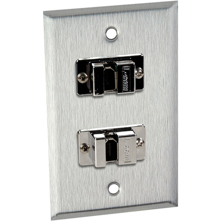 1G Gray Lexan Wall Plate with 2 FireWire 6-Pin Barrels