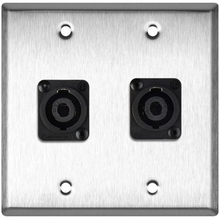 2G Gray Lexan Wall Plate w/2 Neutrik NL4MP -D-Series 4 Pole Speakon