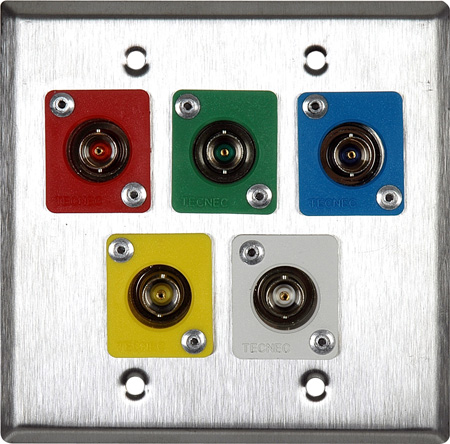2G Brass Wall Plate with 5 Color Coaded TecNec RE-BFBL Feed Thru BNCs