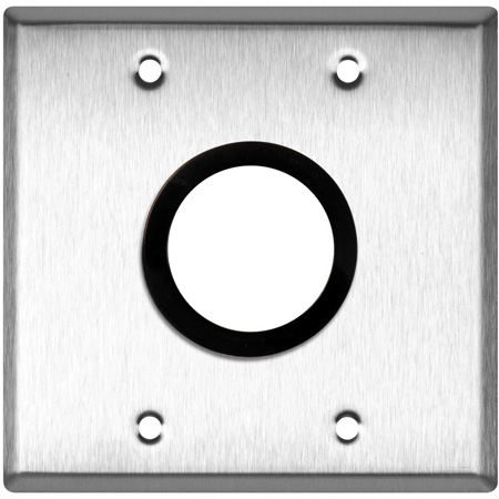 2-Gang Brass Wall Plate with One 1-5/8 inch Grommet