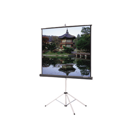 Da-Lite 30658 Picture King Tripod Screen (96x96 Inch Video Spectra)