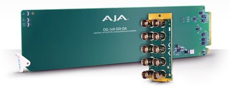 AJA OG-1x9-SDI-DA openGear 1x9 3G-SDI Re-clocking Distribution Amp with 10 BNC Rear Module