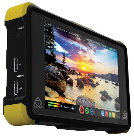 atomos shogun serial number location