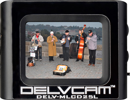 Delvcam DELV-MLCD25L 2.5 Inch Composite Video Monitor