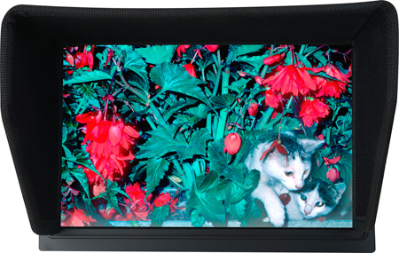 Delvcam DELV-TOUCH-10 10.1in  HDMI In / Out on Camera-Top Touch Screen Monitor