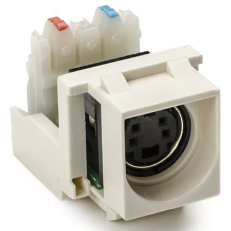 S Video To 110 Punchdown Keystone Module-White