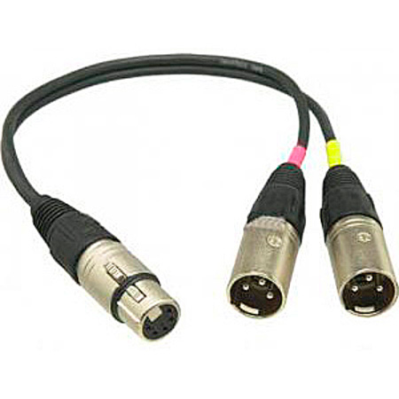 Sennheiser ACS5 5 pin XLR to Dual 3 Pin XLR Adapter 6 in. Length