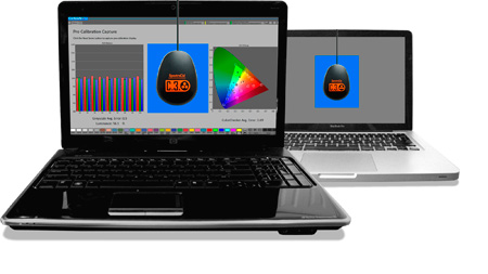 SpectraCal ASMRGBC3 CalMAN RGB Bundle with C3 Colorimeter