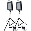 Bescor LED-500K 1000 Watt Combined Dimmable Studio Light Kit