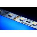 City Theatrical 5050-24-RGBWWCW-60-5-20-1 QolorFLEX 5-in-1 LED Light Tape