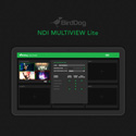 BirdDog BDMVLITE NDI Multiview Lite Streaming Software (Download)