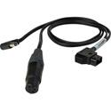 Camplex BLACKJACK 4-Pin XLR Female & 2.5mm DC Plug to P-TAP Y-Cable - 18-Inch