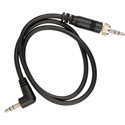 Sennheiser CL1 Line Output Cable for EK100G2 EK500G2 w 1by8 in Miniplug and EW