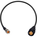 Laird DIN179DT-B-6 Belden 179DT RG179 3G-SDI DIN 1.0/2.3 to BNC Male Video Adapter Cable - 6 Foot