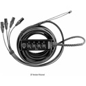 Elite Core Audio PERS4-BF-25 Perseus 4-Channel Female XLR Box to Male XLR Fan Out Snake with TECHFLEX - 25 Foot