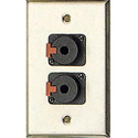 Contractor Series Wall Plate with 2 Latching 1/4 Inch Jacks