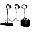 ikan IFD2115 Featherweight Large Kit w/2 IFD1024 & 1 IFD576 w/AB and Sony-V Mount Plates