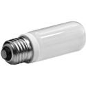 Westcott 553 100 Watt Tungsten Halogen Lamp