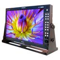 Plura SFP-217-3G 17-Inch Class A 3G 1920x1080 Broadcast Video Monitor w/SFP Port