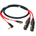 Laird RD1-2MPS2XF-3 2-Channel Stereo 3.5mm Male to XLR-F Red Camera Audio Input Cable - 3 Foot