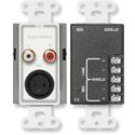 Radio Design Labs D-J3 Mic/Line Input Assembly - White