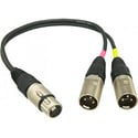 Sennheiser ACS5 5 pin XLR to Dual 3 Pin XLR Adapter 6 in. Length