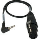 Sescom CAMCORD-MIC 3-Pin XLR Female to 3.5mm TRS Unbalanced Male Mic to DSLR Audio Input Cable - 1.5 Foot