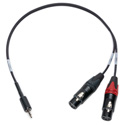 Sescom SES-IPSUMXLR3 iPod/iPad Summing Cable Dual 3-Pin XLR Female to 3.5mm TRS Male Line to Mic Level - 3 Foot