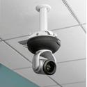 Vaddio QuickCAT Universal Suspended Ceiling Camera Mount - White
