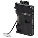 Wooden Camera 280200 Battery Slide Pro Gold Mount - RED Komodo