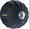 Westcott 2519 Studio Light Beauty Dish Switch - Silver Interior