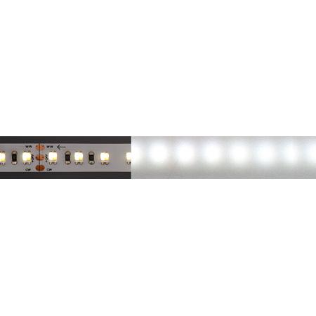 City Theatrical 2835-24-H6000-120-5-20-1 QolorFLEX HiQ High CRI LED Light Tape 6000K
