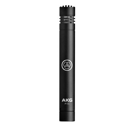 AKG P170 High-Performance Instrumental Microphone