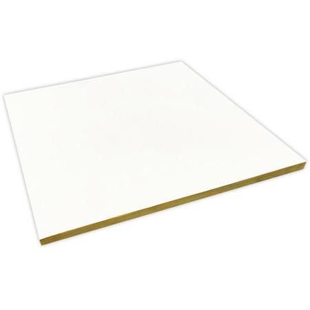 Auralex TCCT22 BASIC T-Coustics Ceiling Tiles - 24 x 24 Inches - White