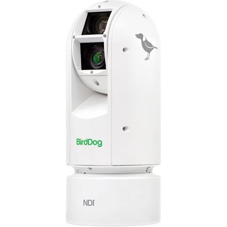 BirdDog Studio BDA300 Eyes A300 IP67 Extreme Weatherproof Full NDI PTZ Camera with Sony Sensor & SDI - White