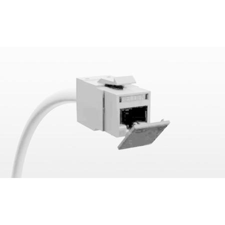 Belden RVUDCEW-B24 Dust Caps for all REVConnct Jacks - Electric White - 24 Pack