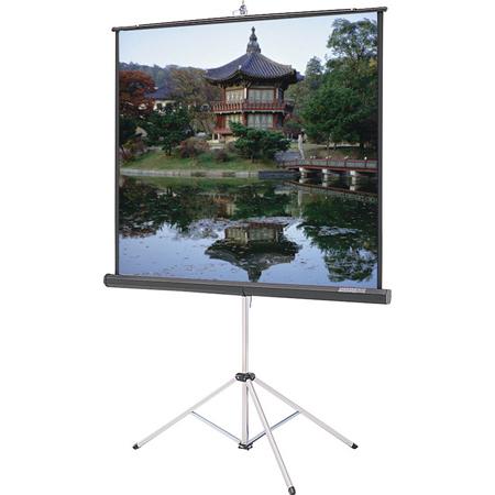 Da-Lite 69905 Carpeted Picture King Screen-Matte White Surface 96x96