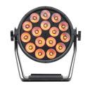 Elation Professional DTW PAR 300 - 16 x 10W Multi-Chip CW / WW/ Amber LEDs