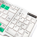 Editors Keys EKABLD002 PC Dedicated Ableton Live Keyboard