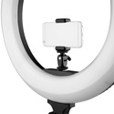 ikan RLB48 Oryon 18 Inch Bi-Color LED Ring Light