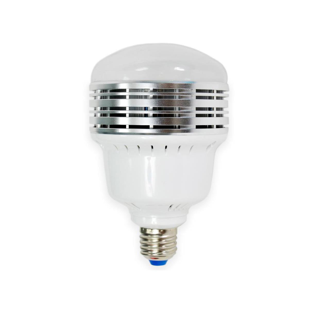 Savage LED60K LED Studio Light Kit