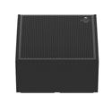 EAW Radius RSX12M 2-Way Self-Powered Stage Monitor - 500W