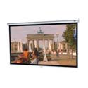 Da-Lite 74654 Model B Video 120 Inch Diagonal Video Spectra Screen