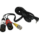 Canon STV-250N Type AV Breakout Cable to Left & Right XLR Male & BNC Video 5 Ft