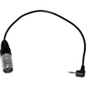 Datavideo CB-8M 3.5mm Jack to 4 Pin XLR Male Adapter Cable