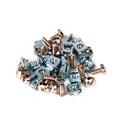 iStar WA-SW10-M5 Cabinet/Rack Screw Kit