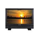 JVC DT-N17H ProHD Multiformat 17.3-Inch Broadcast Field & Studio LCD Monitor