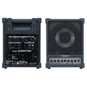 Roland CM-30 30 Watt 6.5in 2-way Cube Monitor