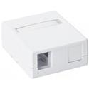 2 Port Surface Mount Box-White